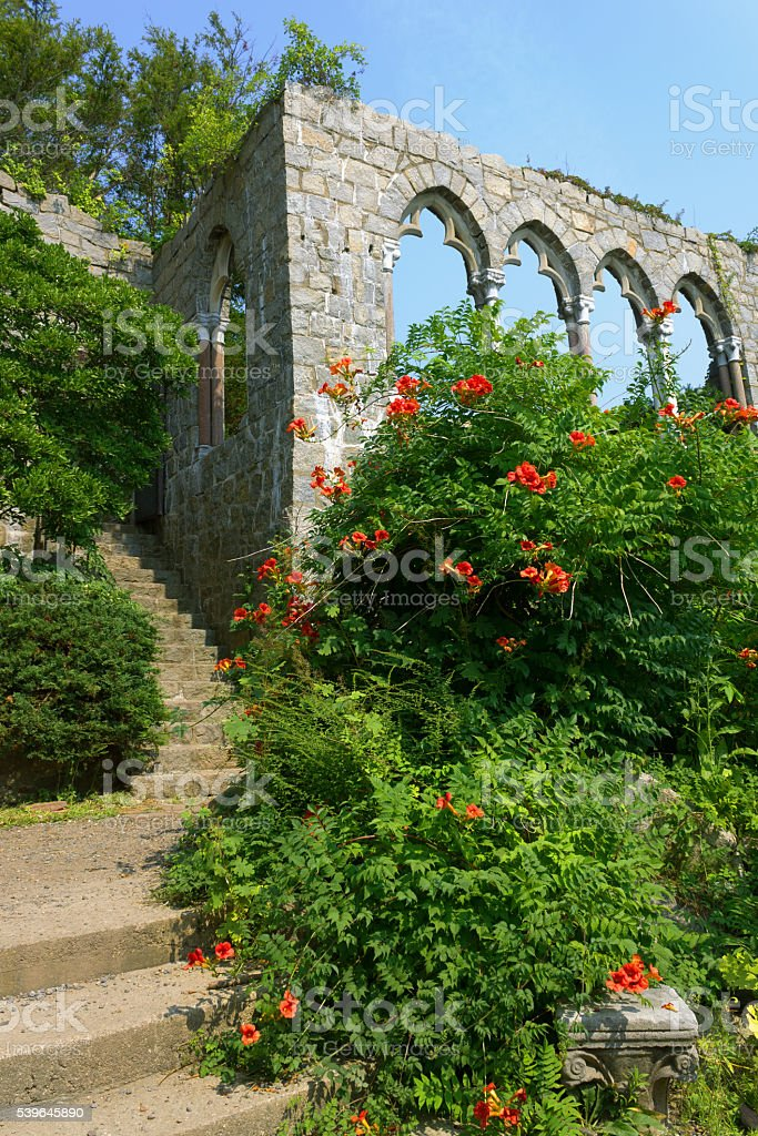 Midieval archs and stairs at Hammond castle with flowering shrubs stock photo