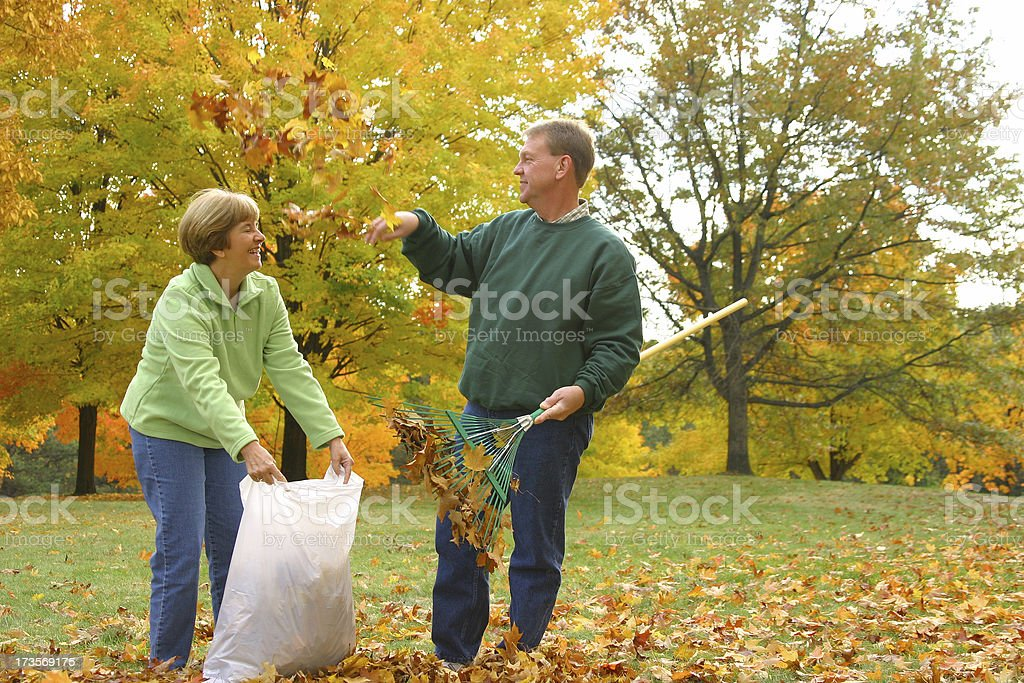 Midlife Series: Leaf Fight royalty-free stock photo
