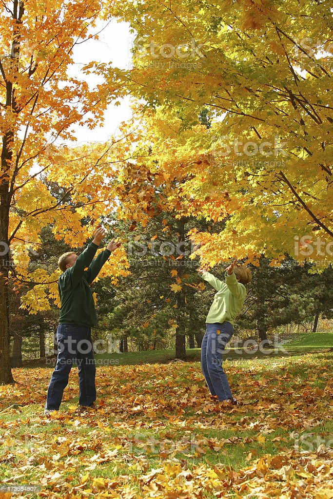 Midlife Series: Leaf Toss royalty-free stock photo