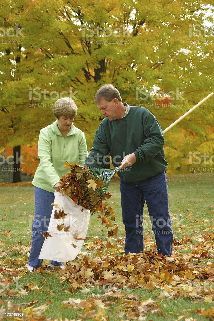 Midlife Series: Raking Leaves stock photo