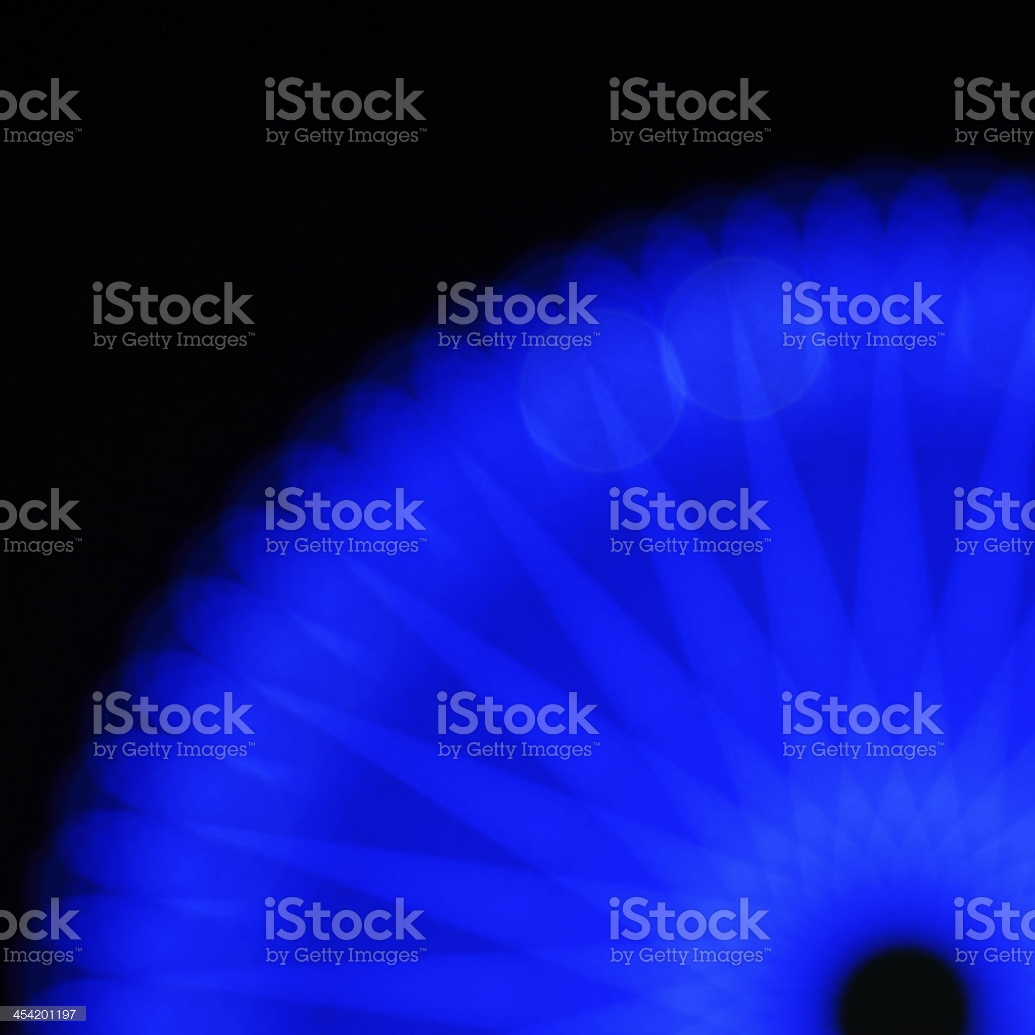 Midnight flower-Blue royalty-free stock photo