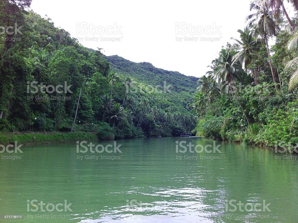Midstream of Loboc River royalty-free stock photo