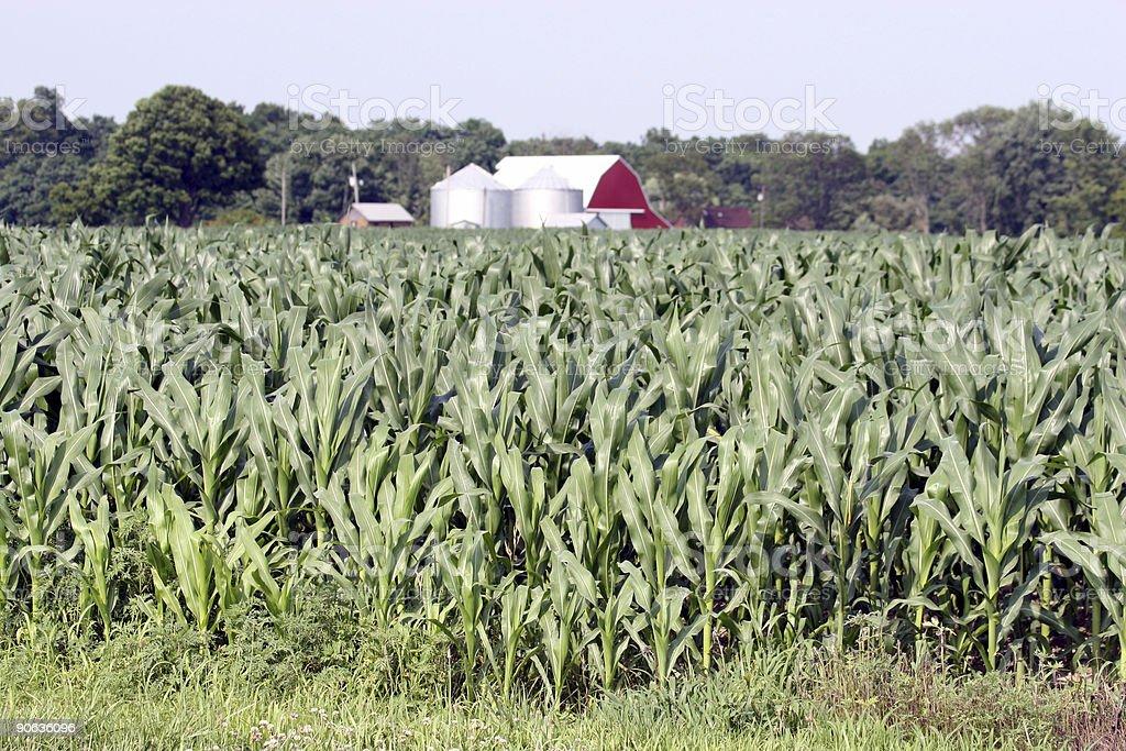 Midwest farm stock photo