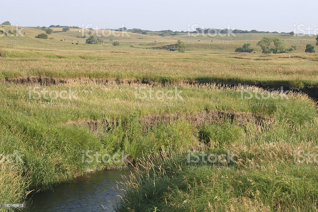 Midwest field and stream royalty-free stock photo