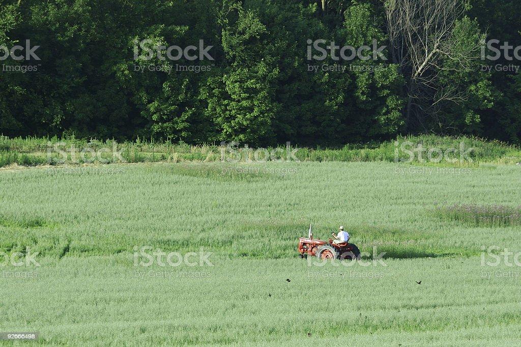 Midwestern Farmer royalty-free stock photo