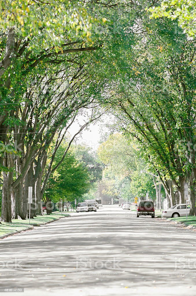 Midwestern Suburban Street in the United States stock photo