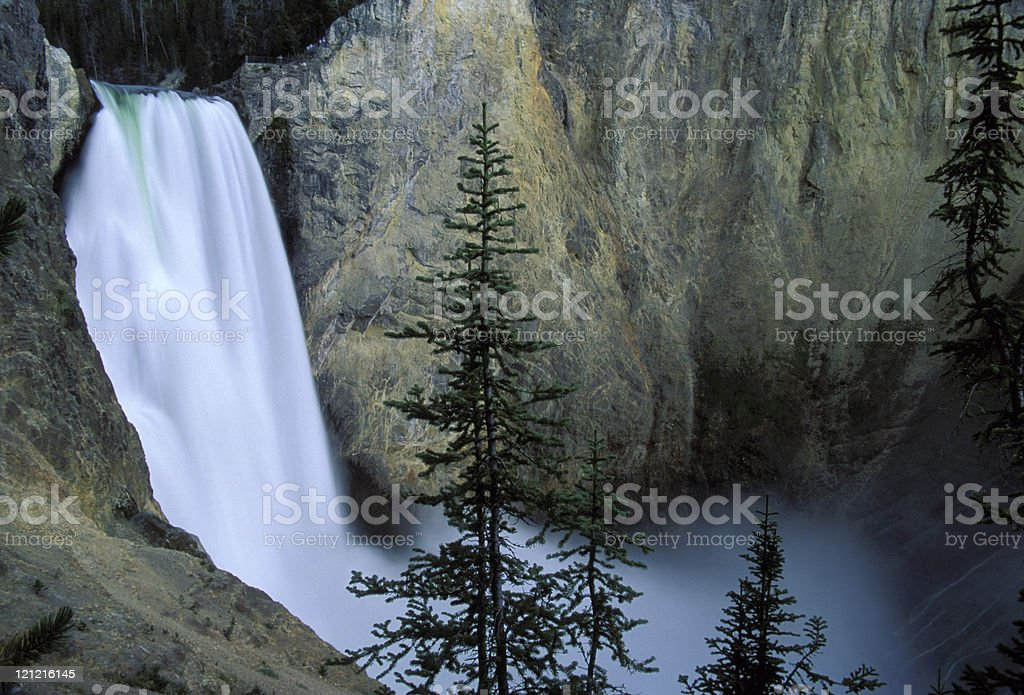Mighty Lower Yellowstone Falls royalty-free stock photo