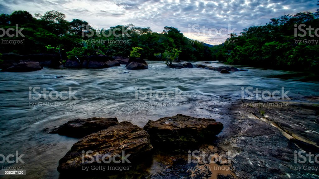 Mighty river in the heart of the green forest stock photo