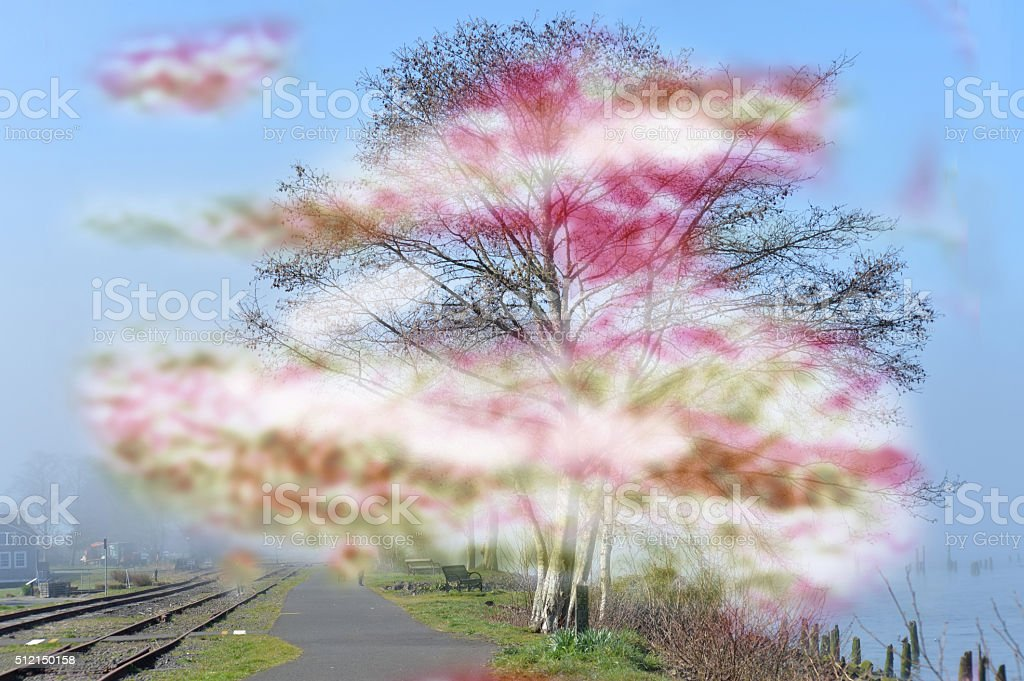 migraine aura stock photo