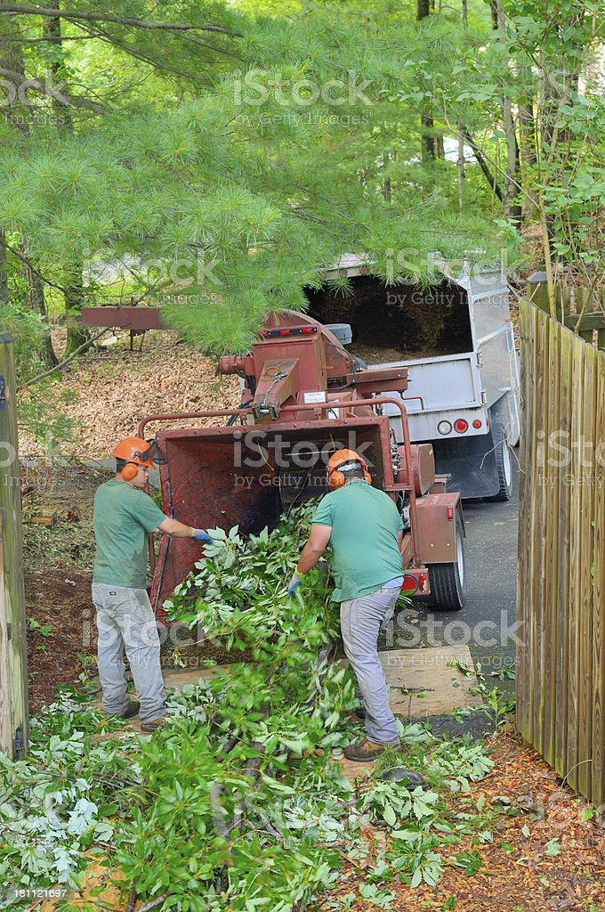 Miguel And Salvador Making Mulch royalty-free stock photo