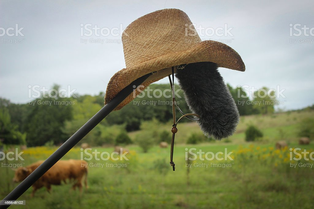 'Mike' - A Mic with a Cowboy Hat stock photo