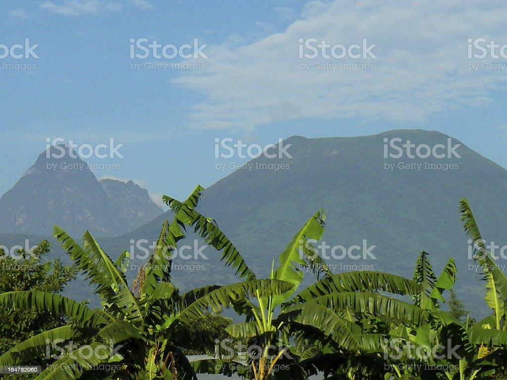 Mikeno and Visoke Volcanoes Virunga Mountains Rwanda stock photo