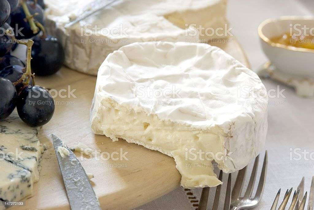 mildew cheese for dinner end stock photo