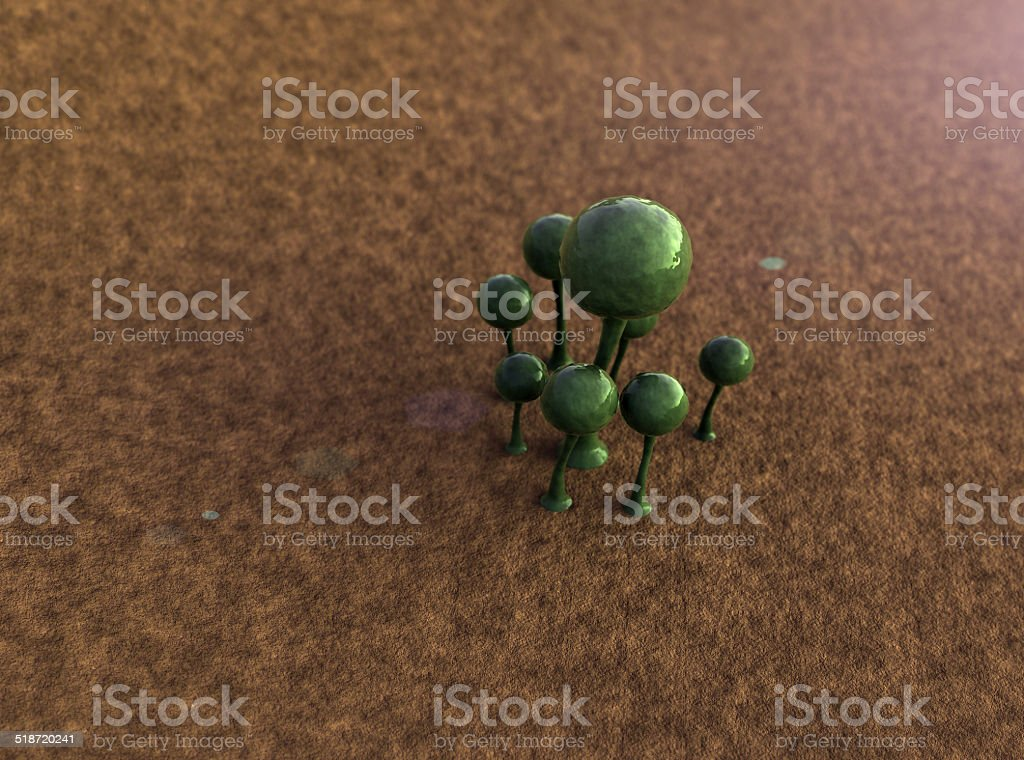 mildew, mold stock photo