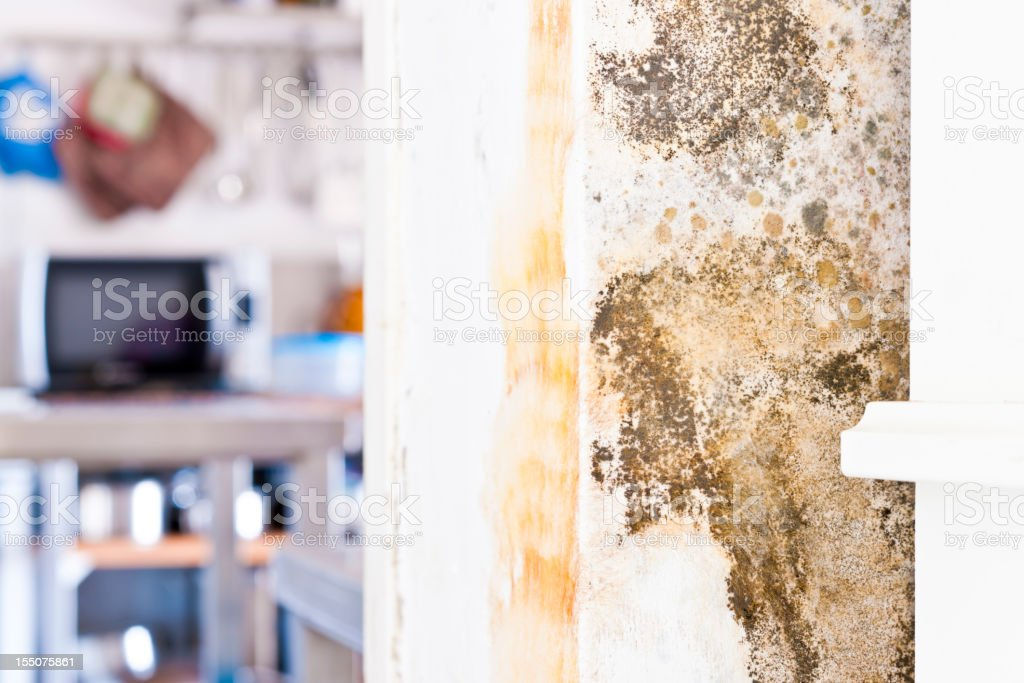 Mildew Mold Rotting Wall of Modern House behind Furniture stock photo