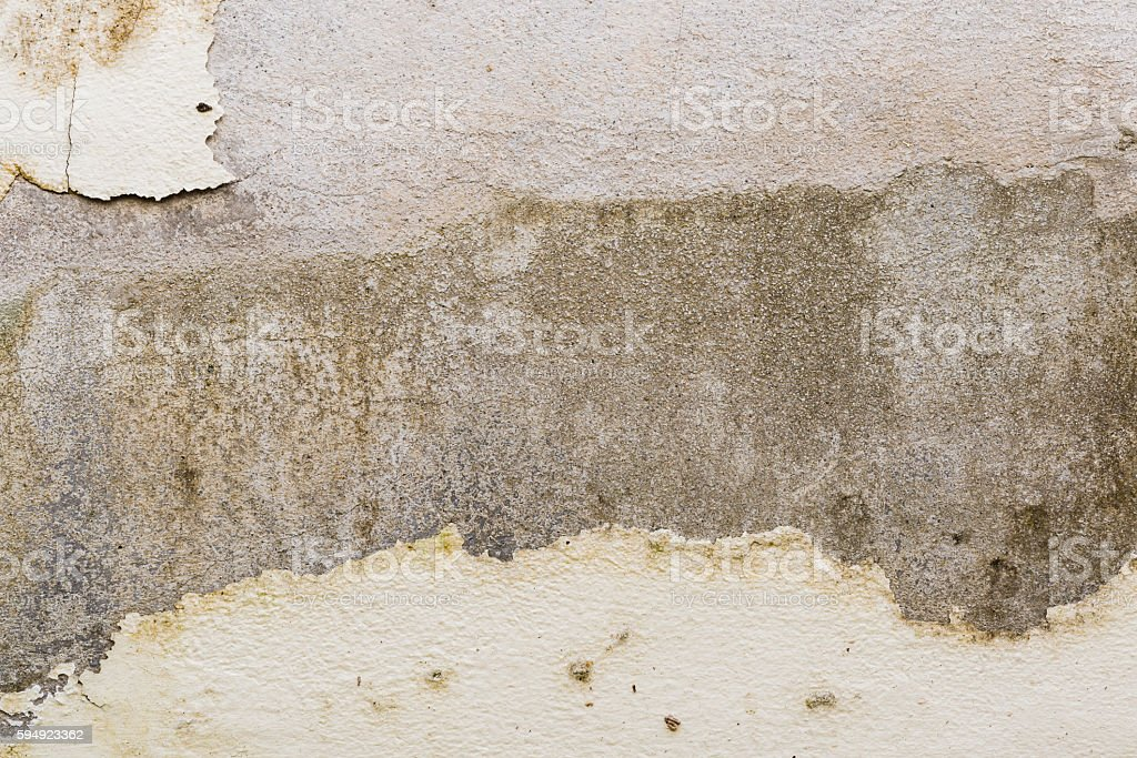 Mildewed walls stock photo