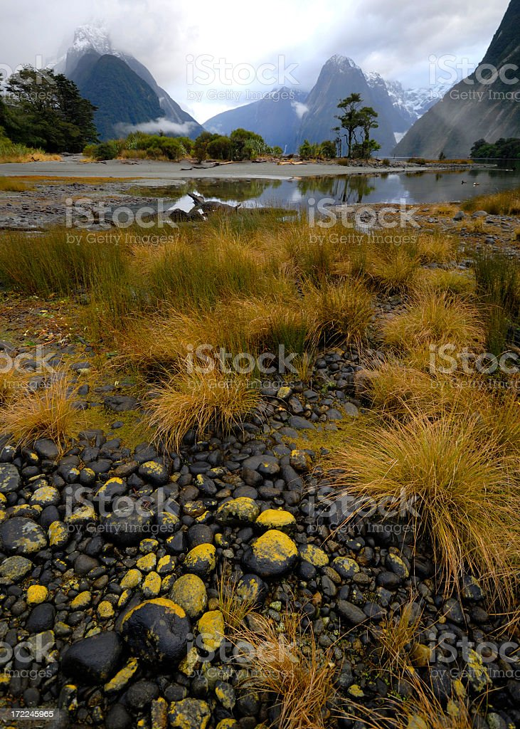 Milford Sound royalty-free stock photo
