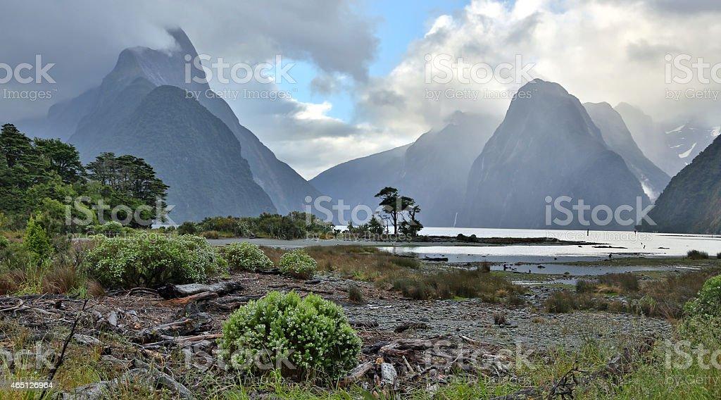 Milford Sound (Fjordland, New Zealand) stock photo