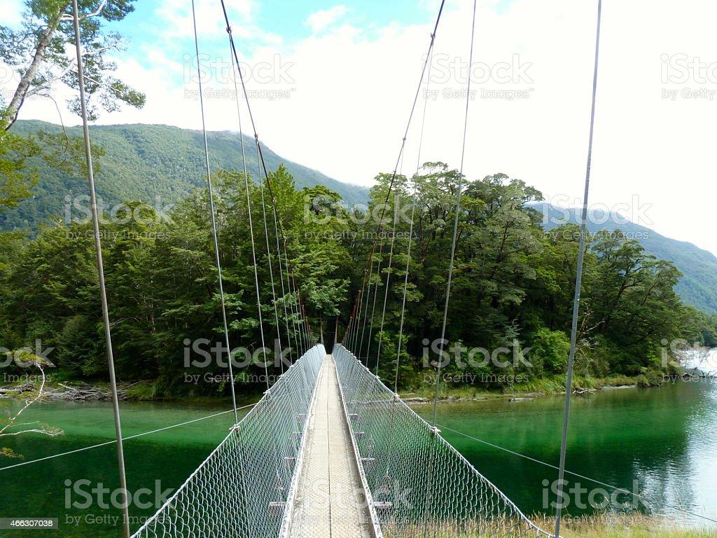Milford Track Foot Bridge stock photo