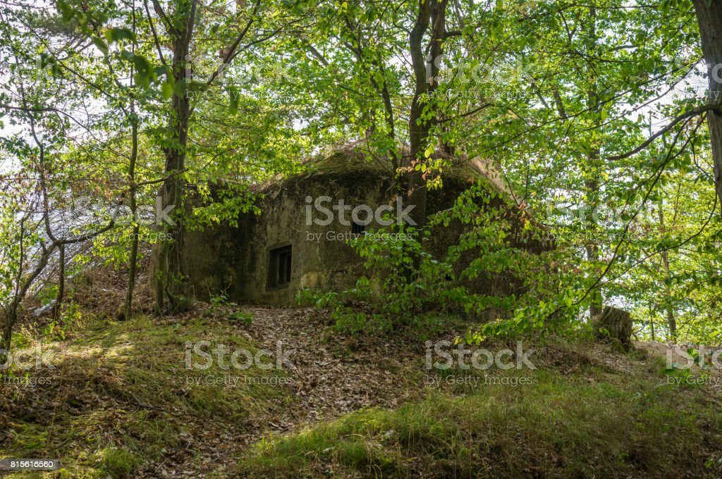Military bunker in forest from World War II stock photo