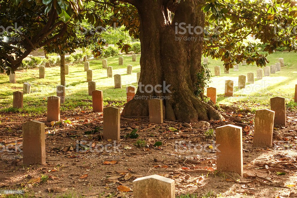Military cemetery - gravestones in the backlight stock photo