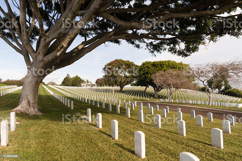 Military Cemetery Manicured Grass Big Tree Marble Headstones stock photo