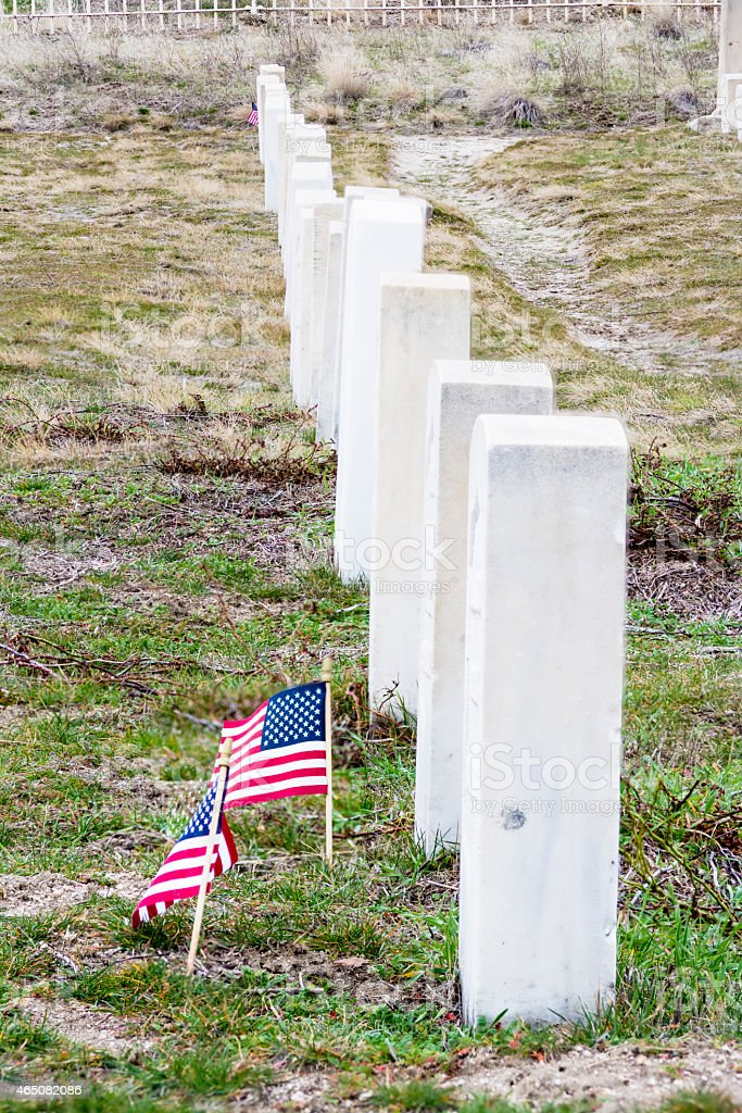 Military Cemetery with white timb stones in a row stock photo