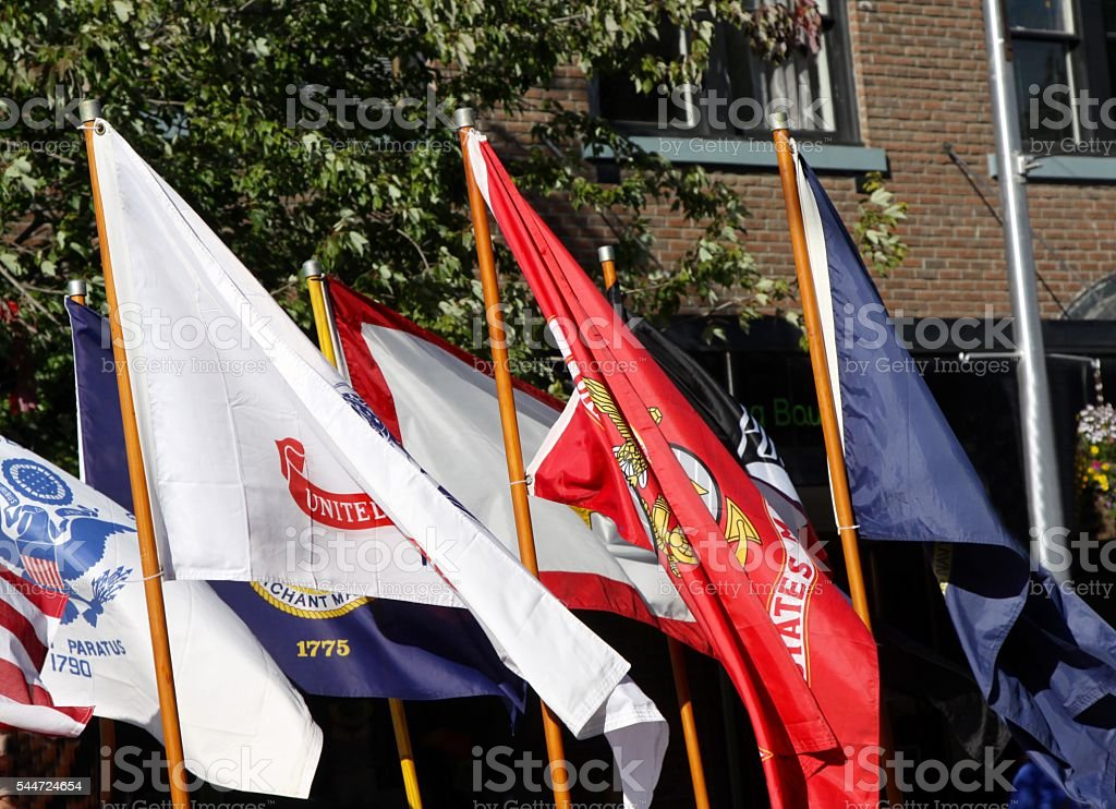 Military Flags In A Parade stock photo
