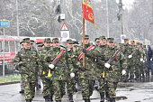 Military officers at a local parade
