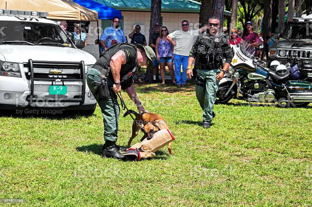 Military Working Dog Demonstration royalty-free stock photo