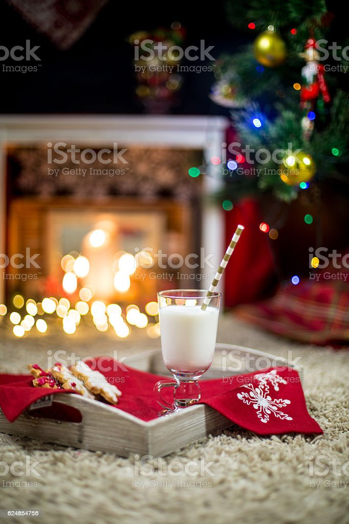 Milk and cookie for Santa stock photo