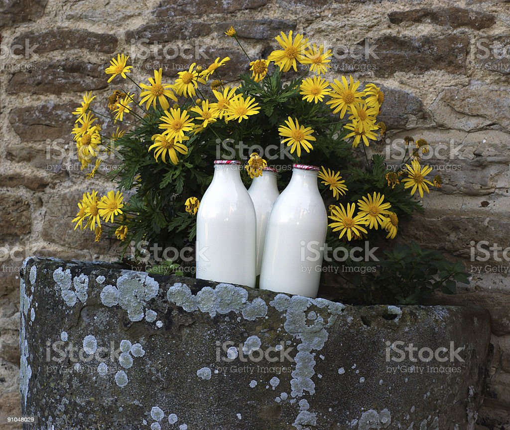 Milk and flowers royalty-free stock photo
