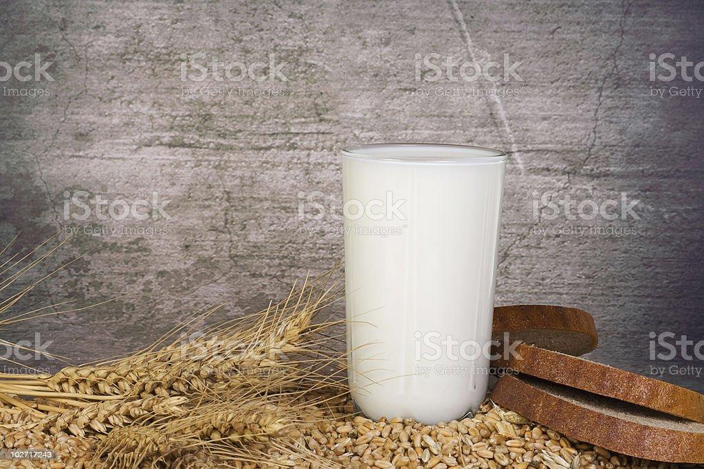 milk and grain royalty-free stock photo