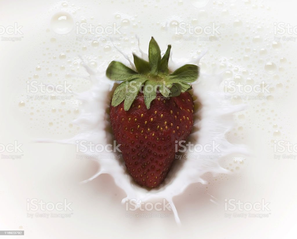 Milk and Strawberry royalty-free stock photo