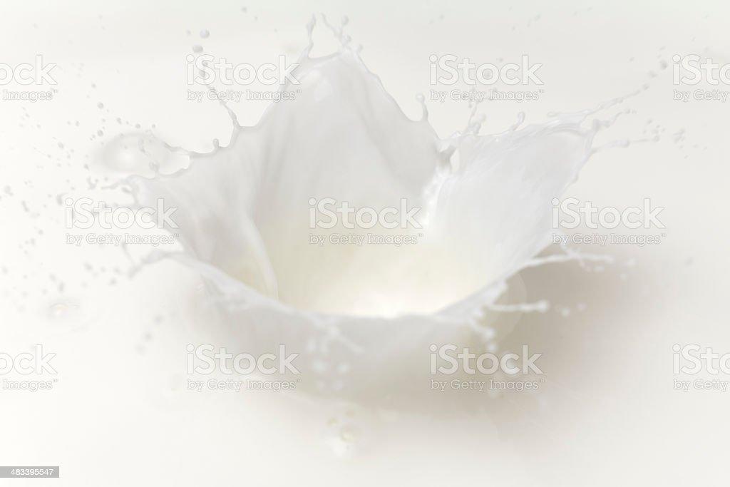 Milk splash royalty-free stock photo