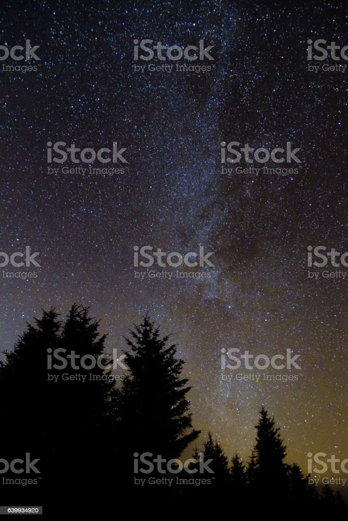 Milky way from forest in the Brecon Beacons National Park stock photo