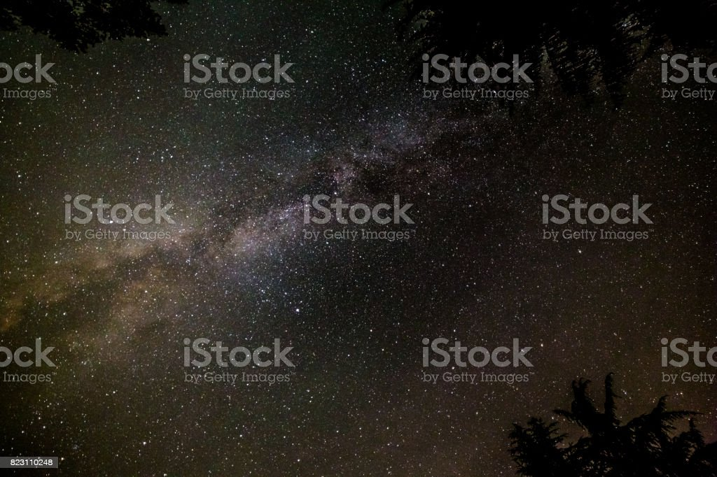 Milky Way Galaxy Seen Through Forest stock photo