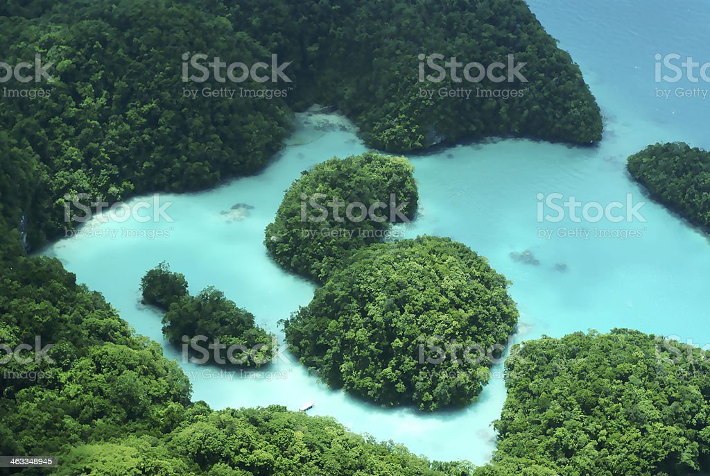 Milky Way in Palau stock photo