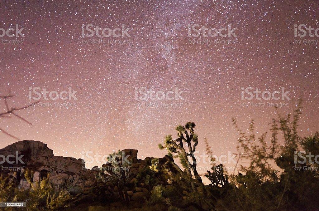 Milky Way Over Joshua Tree National Park royalty-free stock photo