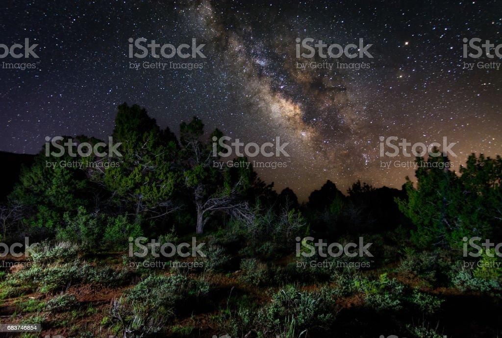 Milky Way over Kolob stock photo