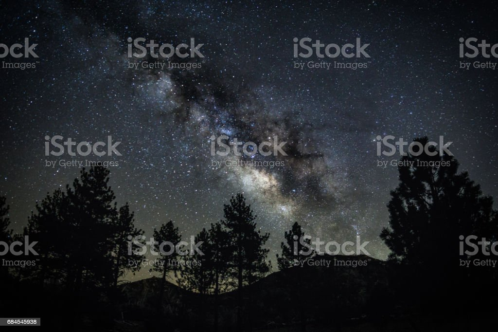 Milky Way Over Trees stock photo