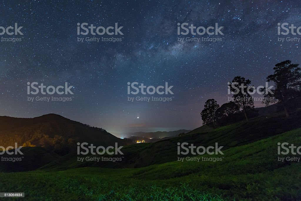 Milky way star and Tea plantation in Cameron highlands, Malaysia stock photo