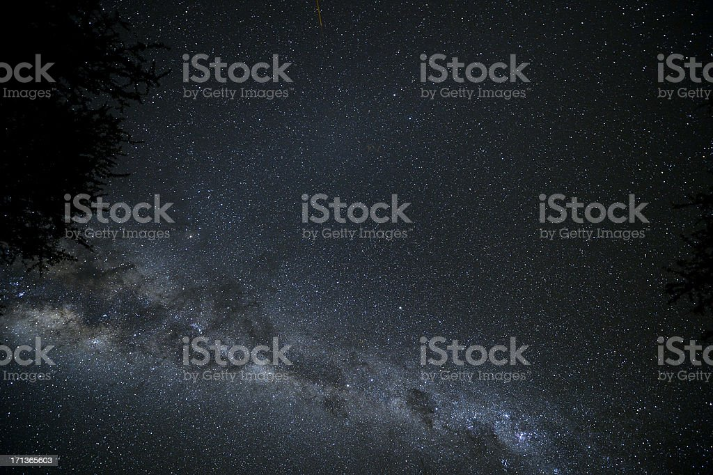 Milky Way with treetop in Namibia royalty-free stock photo