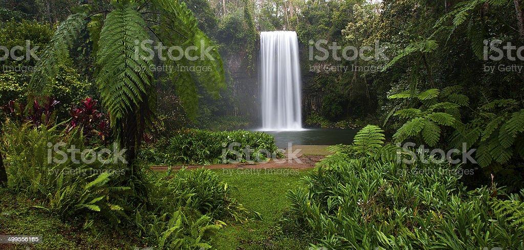 Milla Milla Falls, Queensland, Australia stock photo