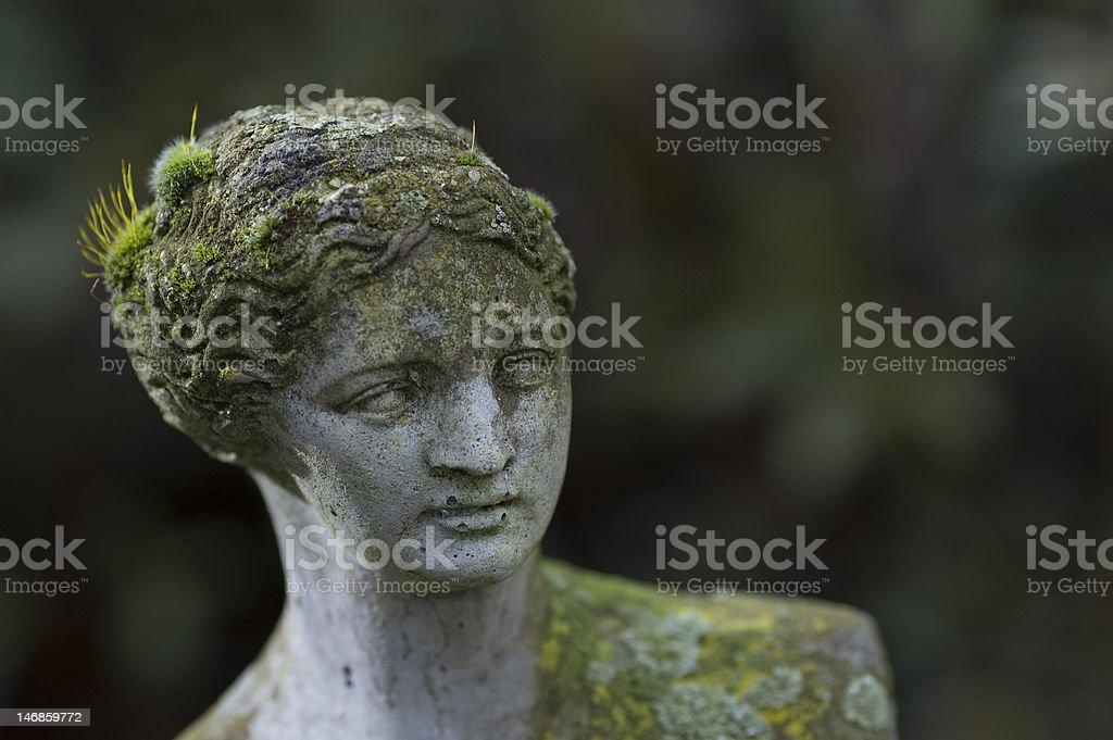 Milo's Venus head with moss royalty-free stock photo