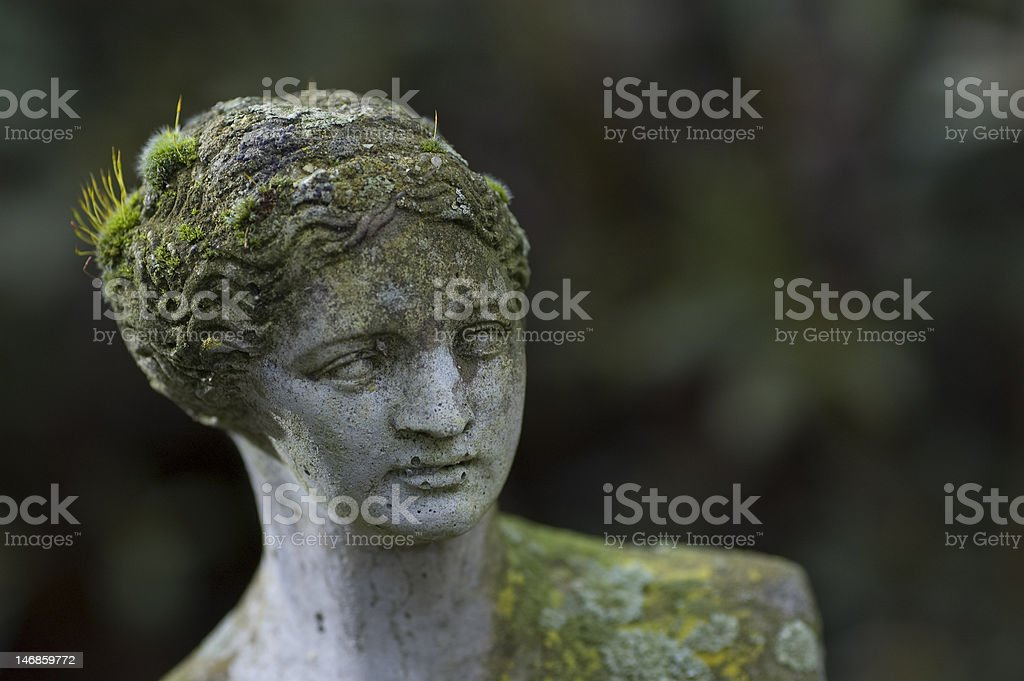 Milo's Venus head with moss stock photo