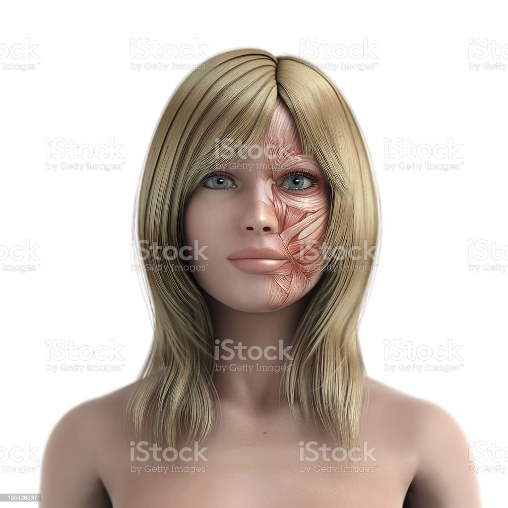 Mimic muscle of blond womens face royalty-free stock photo