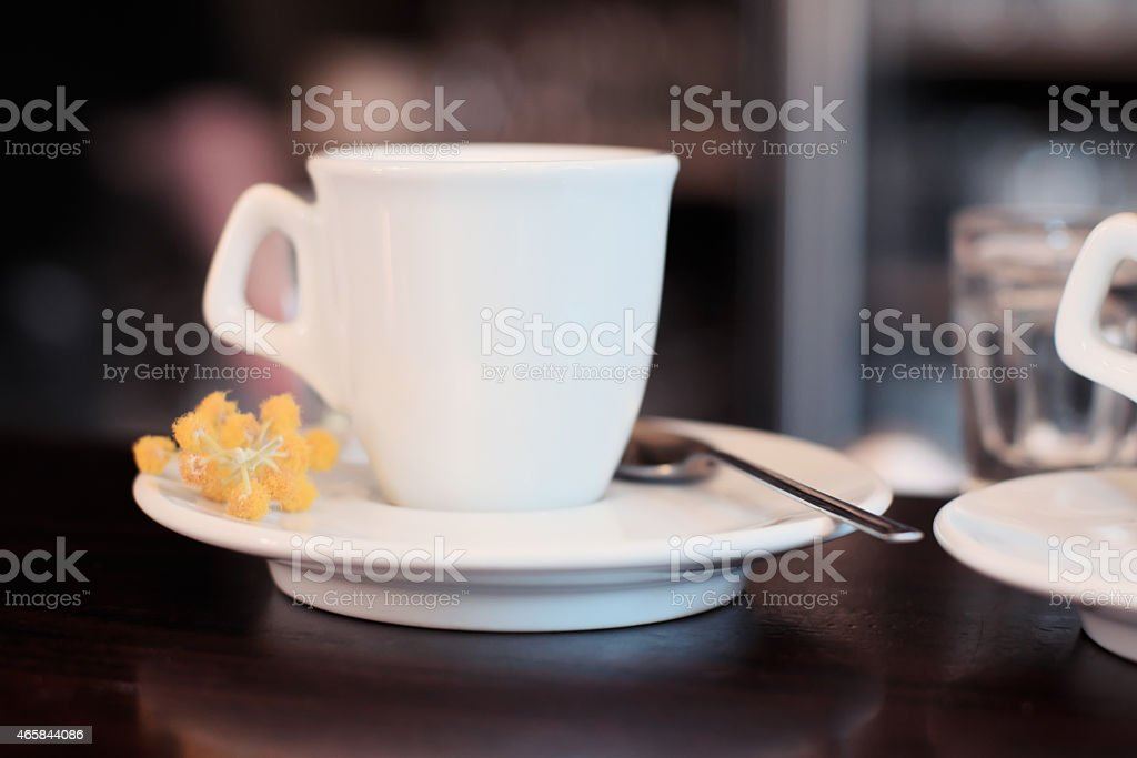 Mimosa flowers by a coffee cup - pretty close-up stock photo