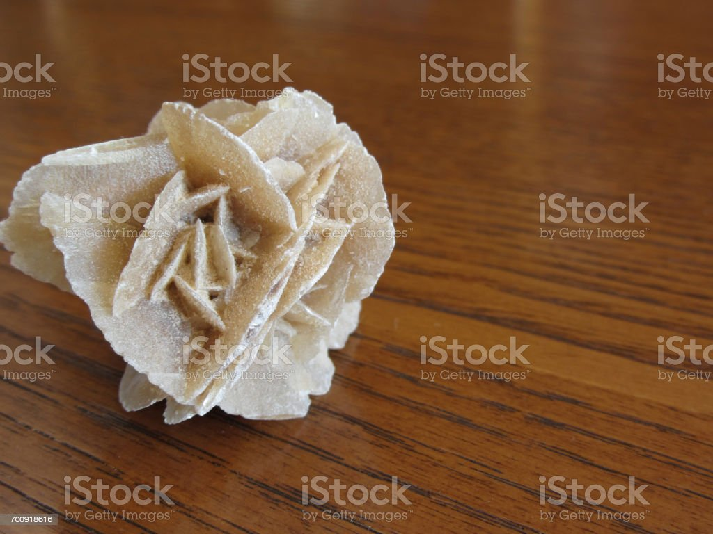 Mineral desert rose on wooden table . Also known as sand rose or rose rock or selenite rose or gypsum rose or baryte rose . stock photo