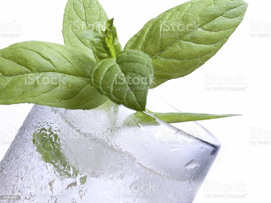 Mineral water with mint leaves royalty-free stock photo
